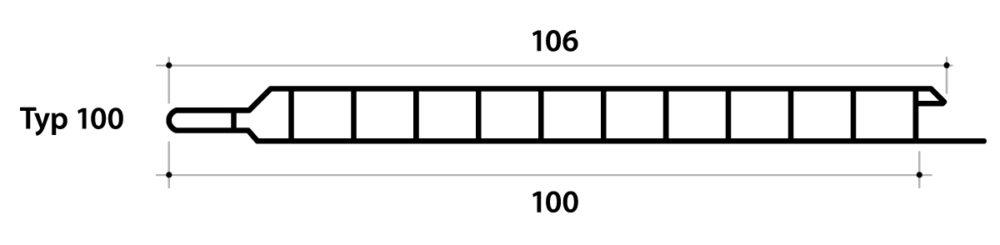 typ100